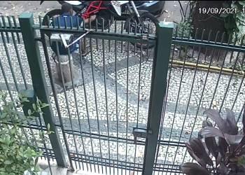 Homem tenta furtar moto e não consegue na Tijuca